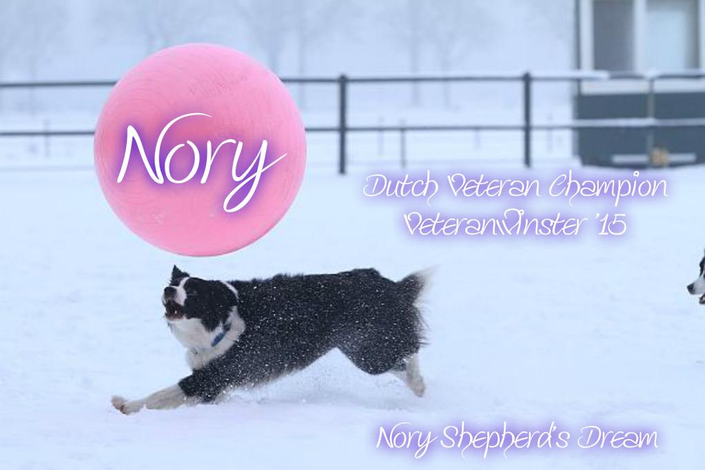 nory-intro